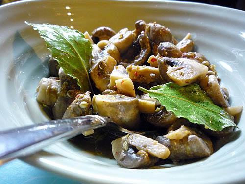 Coriander Mushrooms