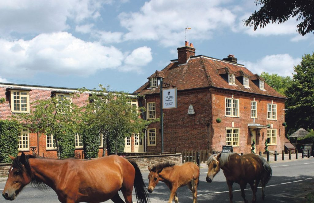 New Forest / The Bell Inn / CountryWives online magazine