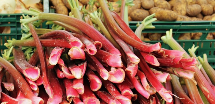 Rhubarb in season / What's Cooking / The CountryWives