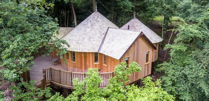 The Buzzardry - a luxurious treehouse retreat
