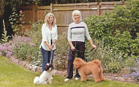 Jane Gordon & Annabel with their two dogs from article ~ My Dream move to the Country left me lonely by Jane Gordon (& Belle) from Stella Magazine