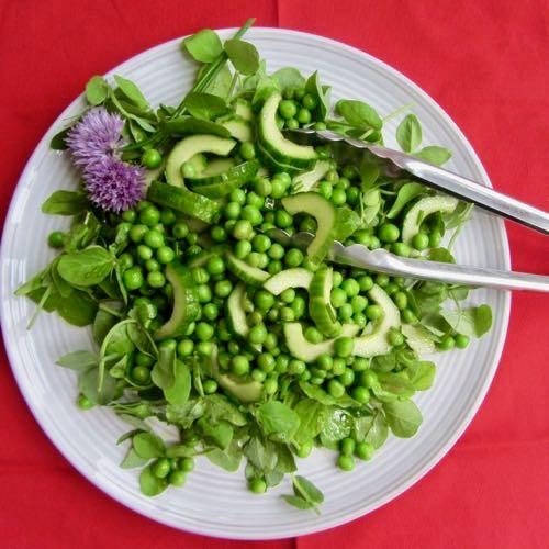 Cucumber & Pea Salad