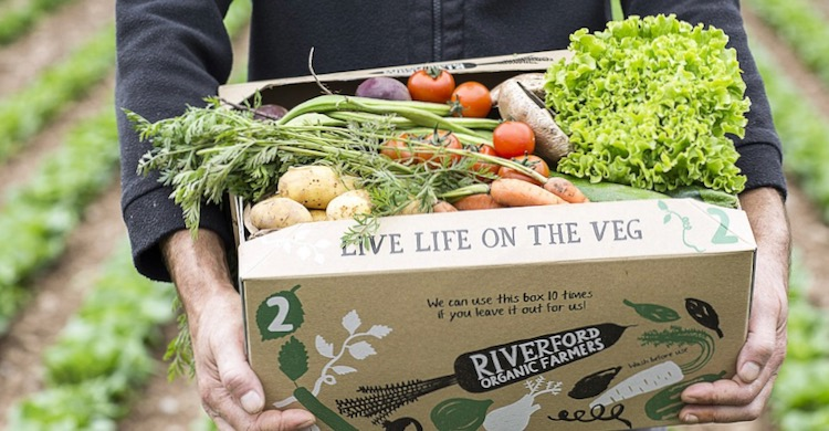 Box of veg from Riverford from post Living Life on the Veg: how I am coping with a family of vegetarians