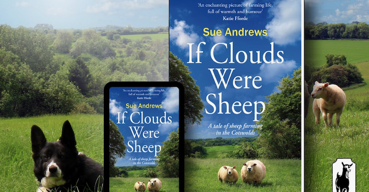 Book cover of If Clouds were Sheep for the A&G online magazine for women