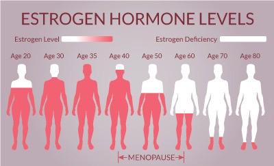 Understanding your hormones even as older women